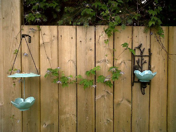 Another few of the feeder and bird bath
