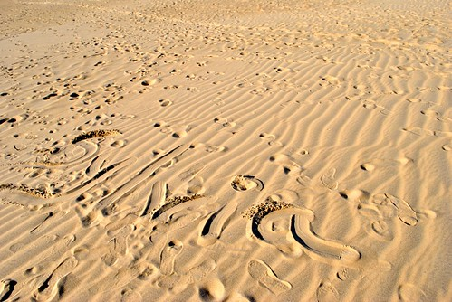 Leaving my mark on the dune - Jockey National Park