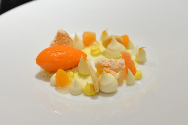 'citrus' lemon curd, satsuma, carrot sorbet, angel food cake powder