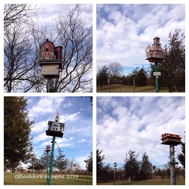 Nov 15 - in five years {In the five years we've been here we've watched Birdhouse City has been basically rebuilt} lots of volunteer hours have been put into this place it looks great now! #photoaday #picton #princeedwardcounty #birdhousecity