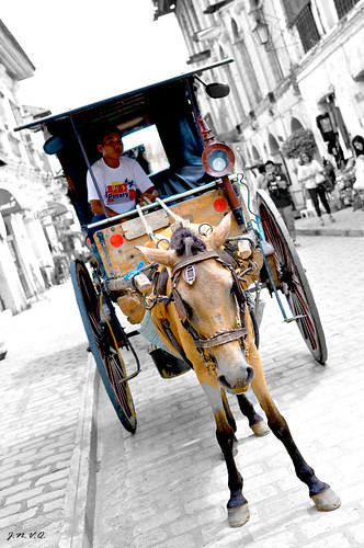 Ilocos tour (13)