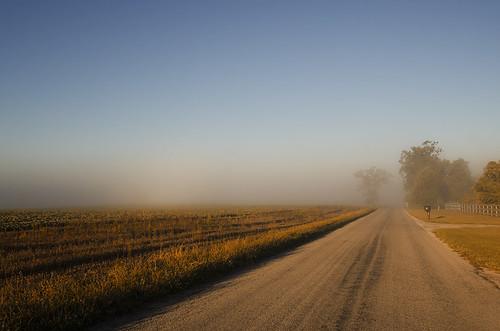 Foggy Country Road by mizzginnn