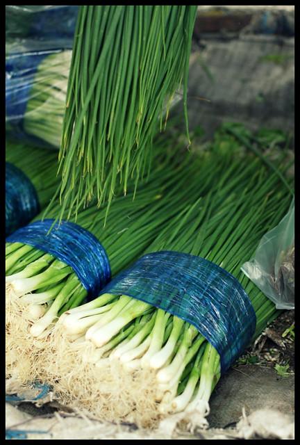 thai spring onions