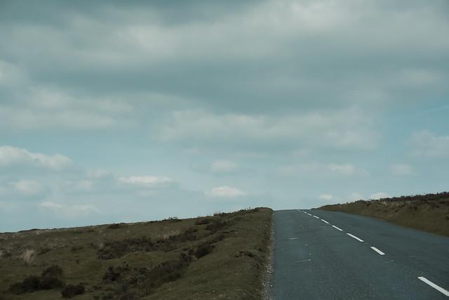 Dartmoor bleakness