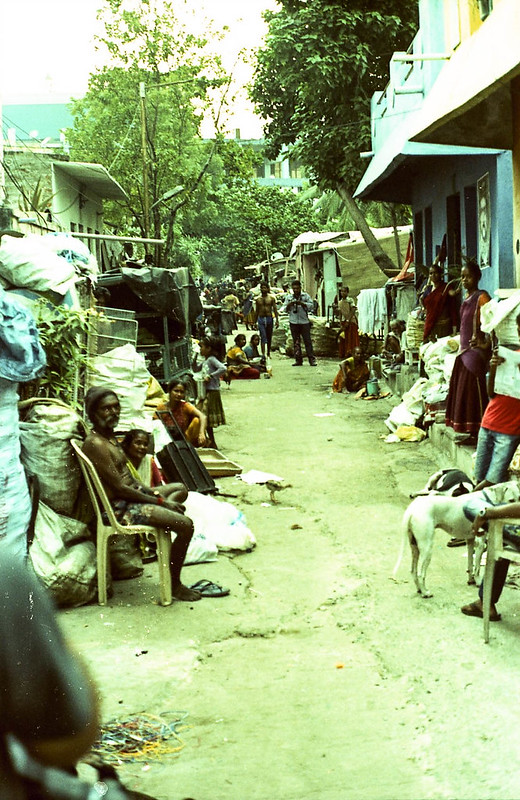Gypsy colony