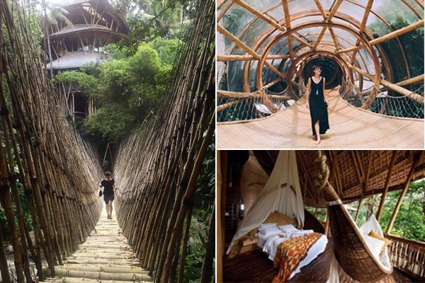 green village (1)