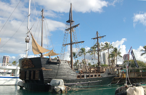 Treasure Seeker in Kewalo