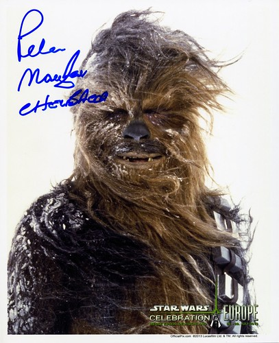 016-Peter Mayhew-Chewbacca