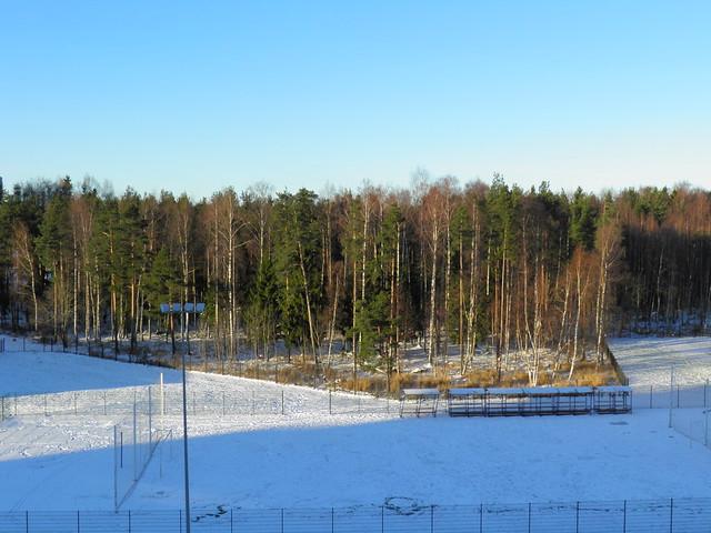 Зимняя сказка // Winter fairytale