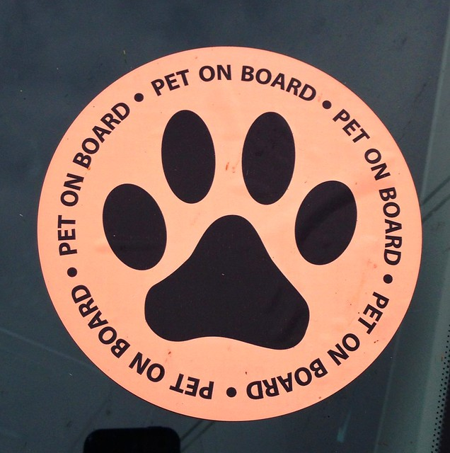 Pet on board