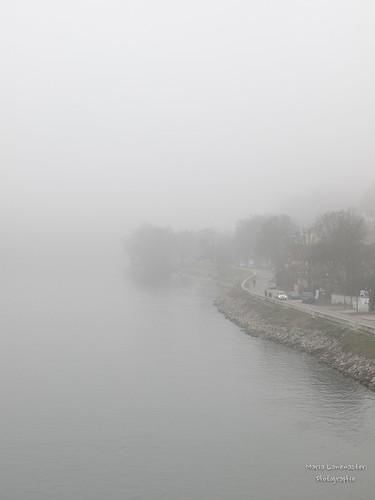 Alt-Urfahr im Nebel