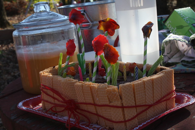 Flower Windowbox Cake