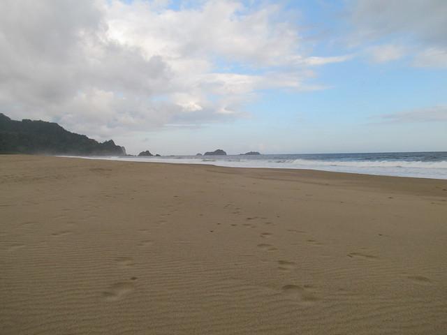 Pantai Pelepasan Tukik Sukamade