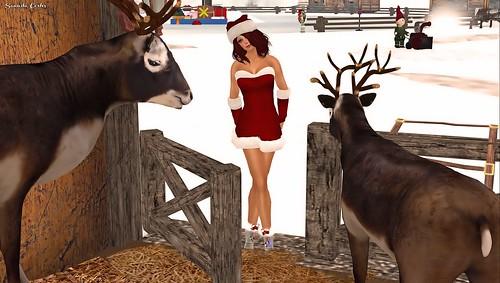merry christmas kanou (WLTB)