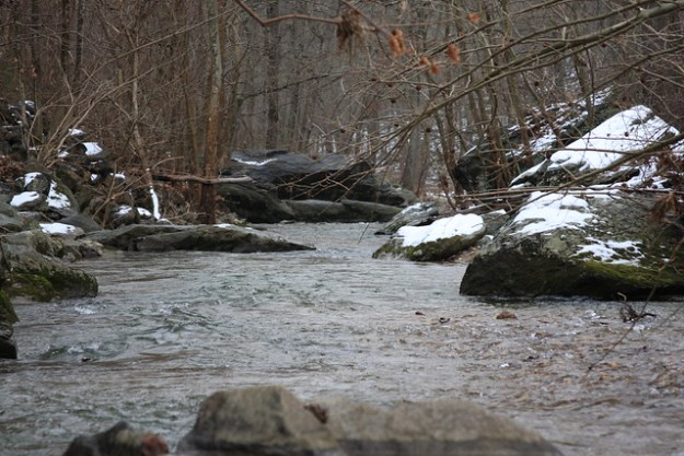Baltimore County Trout Streams