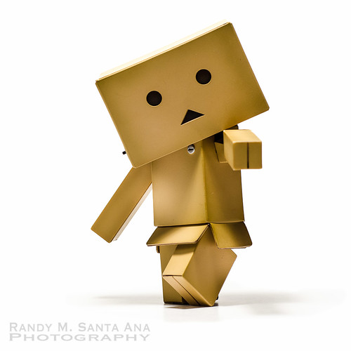 Danbo Back To Being Danbo.