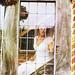 Film Photography - Bridal