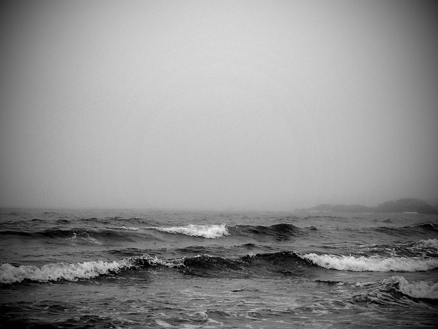 Waves BW