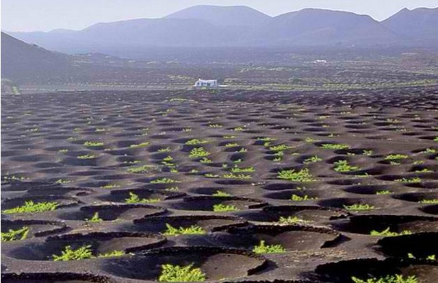 volanic landscape