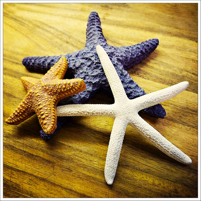 And the stars we could reach were the starfish on the beach
