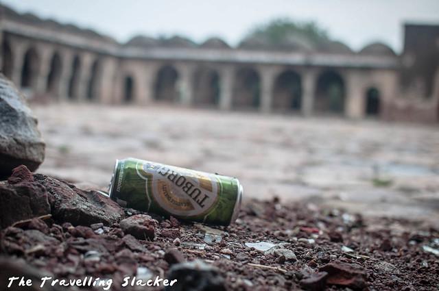 Begumpur Masjid (9)