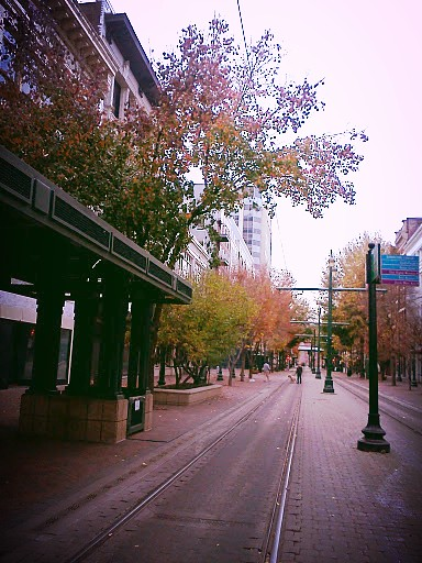 a quiet November morning in downtown Memphis
