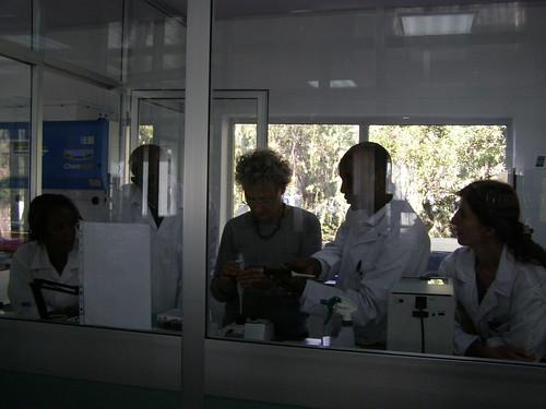 Dr. Evelyn Moller training Genebank staff