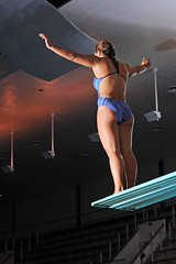 """USAFA Diving 1"" US Air Force photo by Liz Copan"