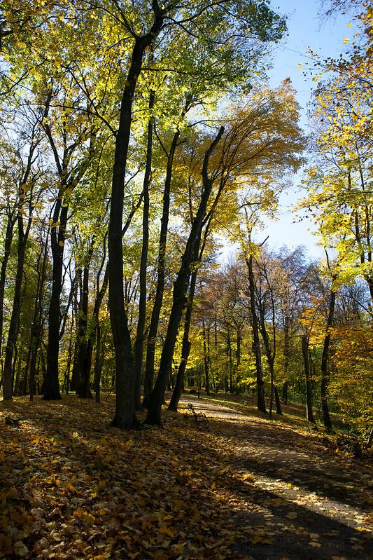 Striyskiy park. Lviv, Ukraine