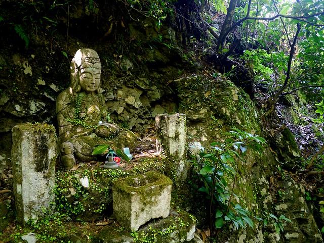 Forest Buddha2