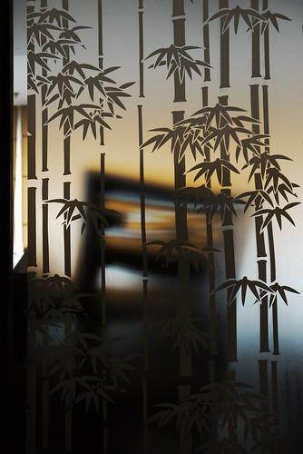 Bamboo on glass by gasepu_chem
