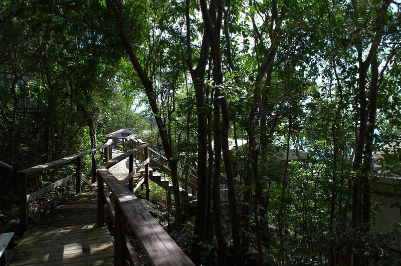 Maho Stairs
