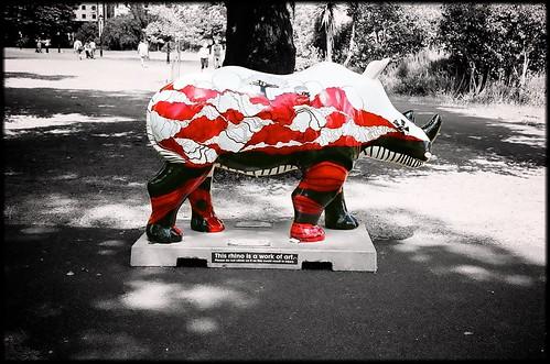 Go Rhinos: Rohan by Davidap2009