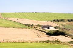 #Purbeck Hills in #Dorset