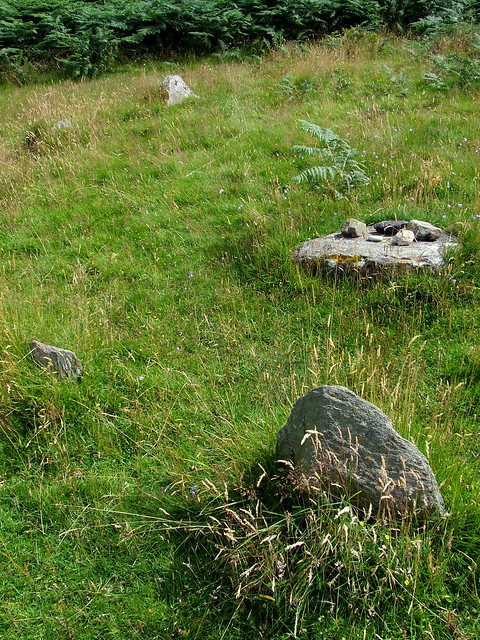 neo-Neolithic circle at Fairy Dells