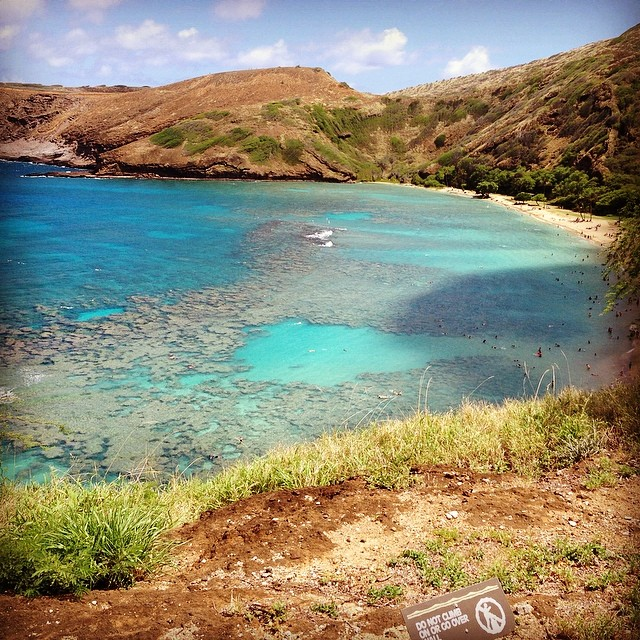 Snorkeling at Hanauma Bay.