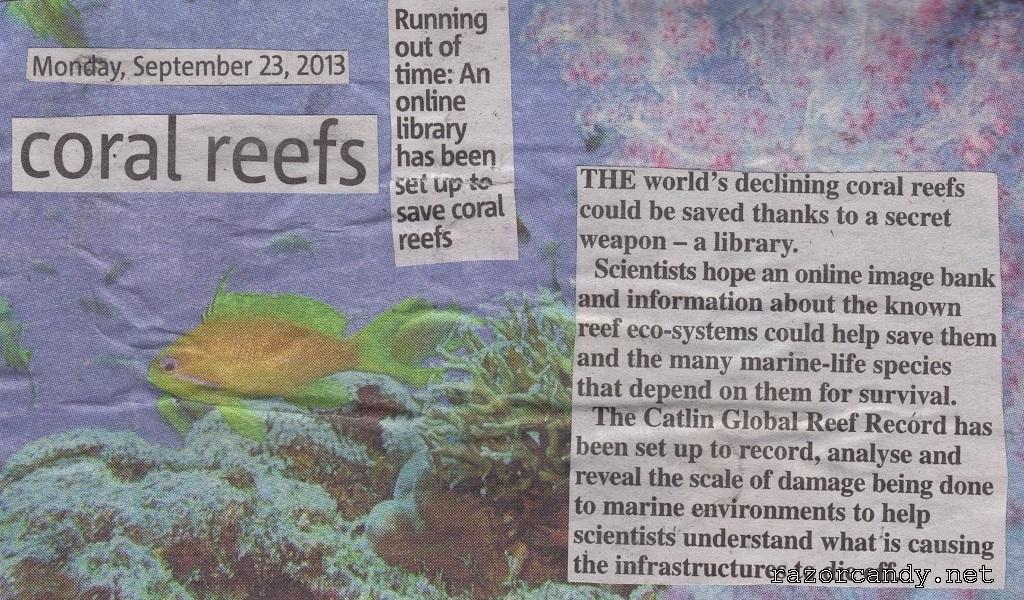 23-09-2013 Coral Reef back