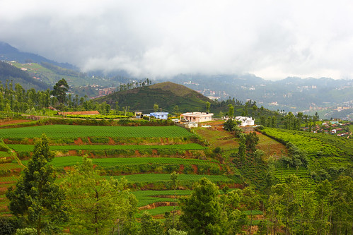 Ooty at its Best # Explored @ 1 on 10.12.2013 by Suresh ram - Back & catching up