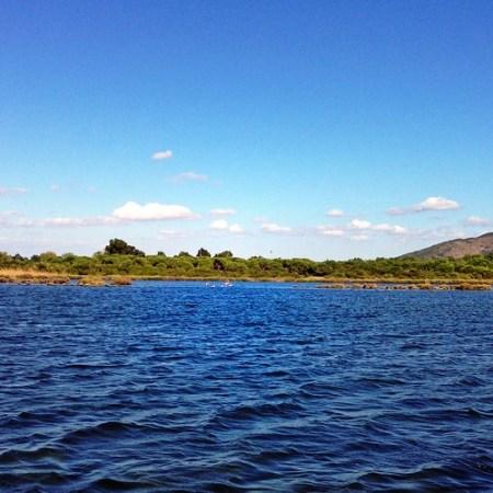 Giro in battello nella Laguna di Orbetello
