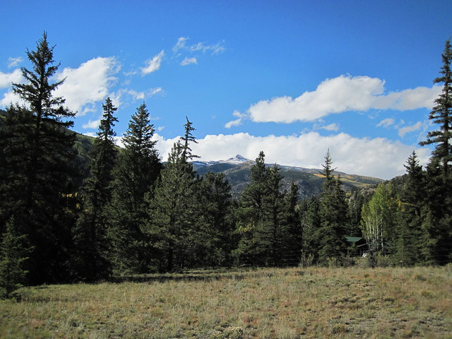 Meadow at the Alferd Packer Massacre Site