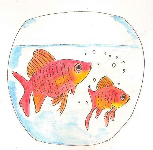 fish - v