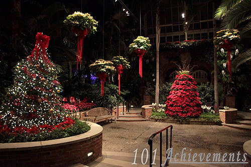Phipps Winter Flower Show