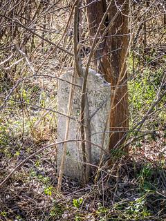 Thompson Cemetery-015