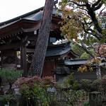 Takayama-15
