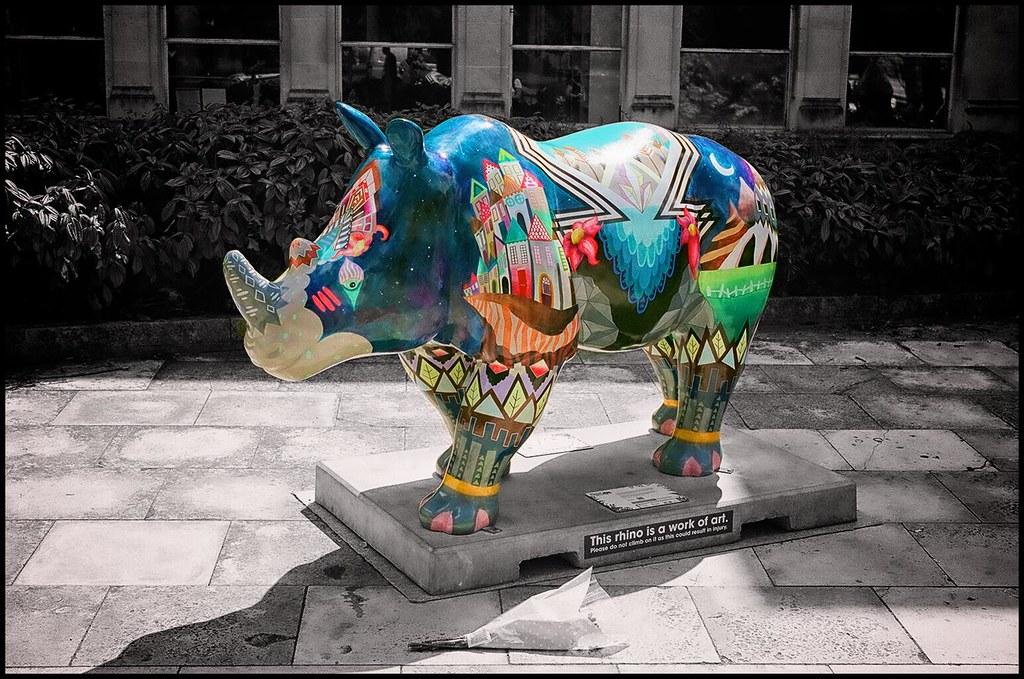 Go Rhinos: Planet Rhino.