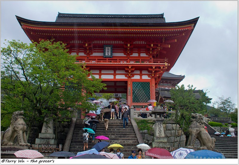 關西.京阪神之夏 - 就算是颱風天也會有很多人去插旗的