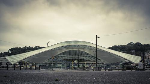 Landing (Gare de Liège-Guillemins, Belgique) - Photo : Gilderic