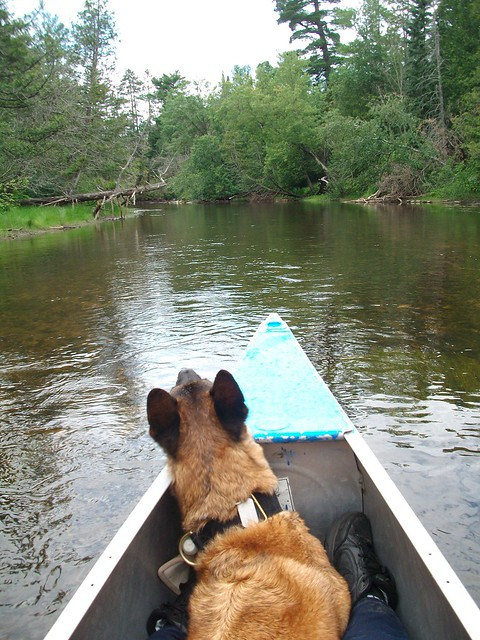 7/12/b Dazzle canoeing the Au Sable