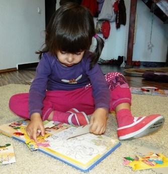 cartea-puzzle (1)
