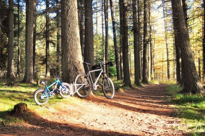 FollowMe Tandem and Islabikes Beinn 16 getting ready to set off on an Autumn family bike ride!